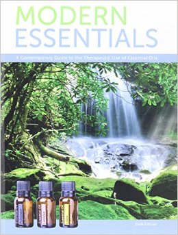 Boek Modern Essentials
