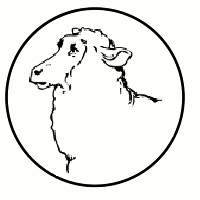 Schapen & geiten